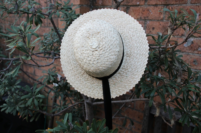 cabbage-tree-hat-photo-susan-brian