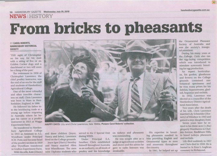 From bricks to pheasants